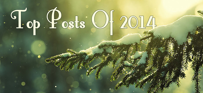 My 6 Most Popular Posts In 2014
